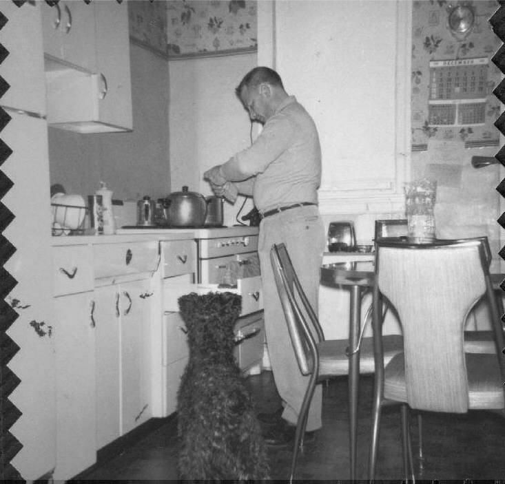Typical South Philly row-home kitchen, circa early 1960s ...