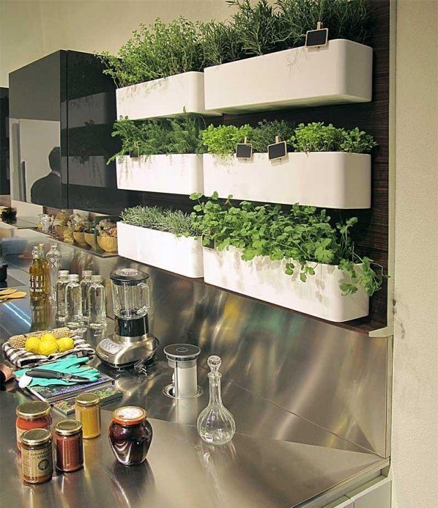 krautergarten küche anlegen kunststoff kübel wand