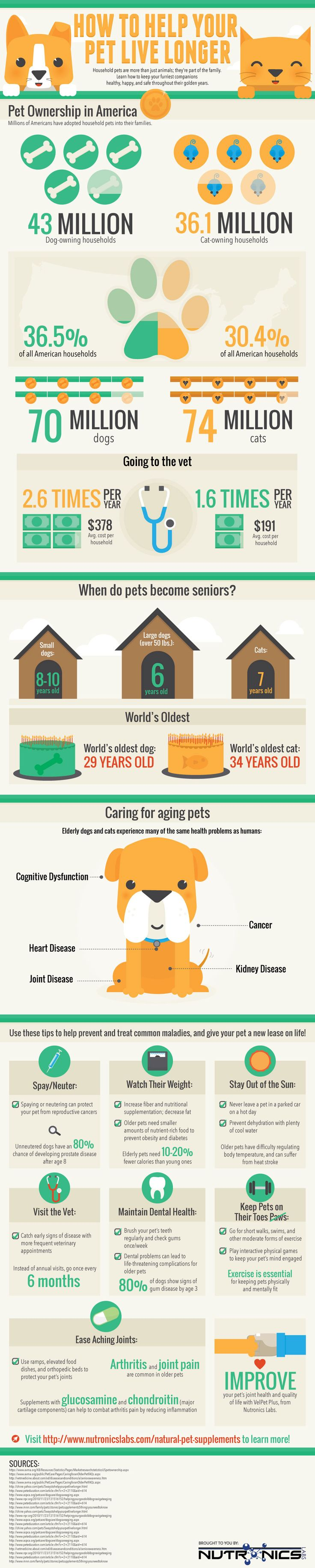 How To Help Your Pet Live Longer   #Infographic #HowTo #Pet  Ook op http://www.canessi.com/hoe-oud-worden-katten/