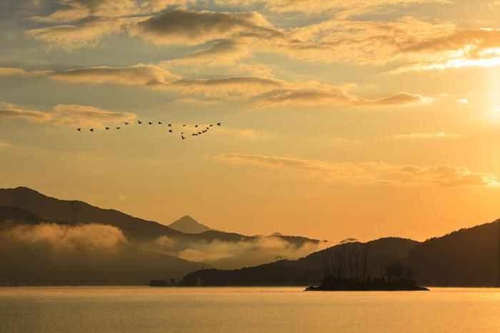 """트위터의 한국관광공사 :: 대한민국 구석구석 님: """"남한강과 북한강의 두 물이 만나는 #양평 #두물머리 에서 전해드리는 멋진 일출 풍경입니다. 꼭 바다가 아니더라도 이렇게 멋진 일출, 일몰을 만날 수 있답니다~ :D http://t.co/WqJLkkNowE"""""""