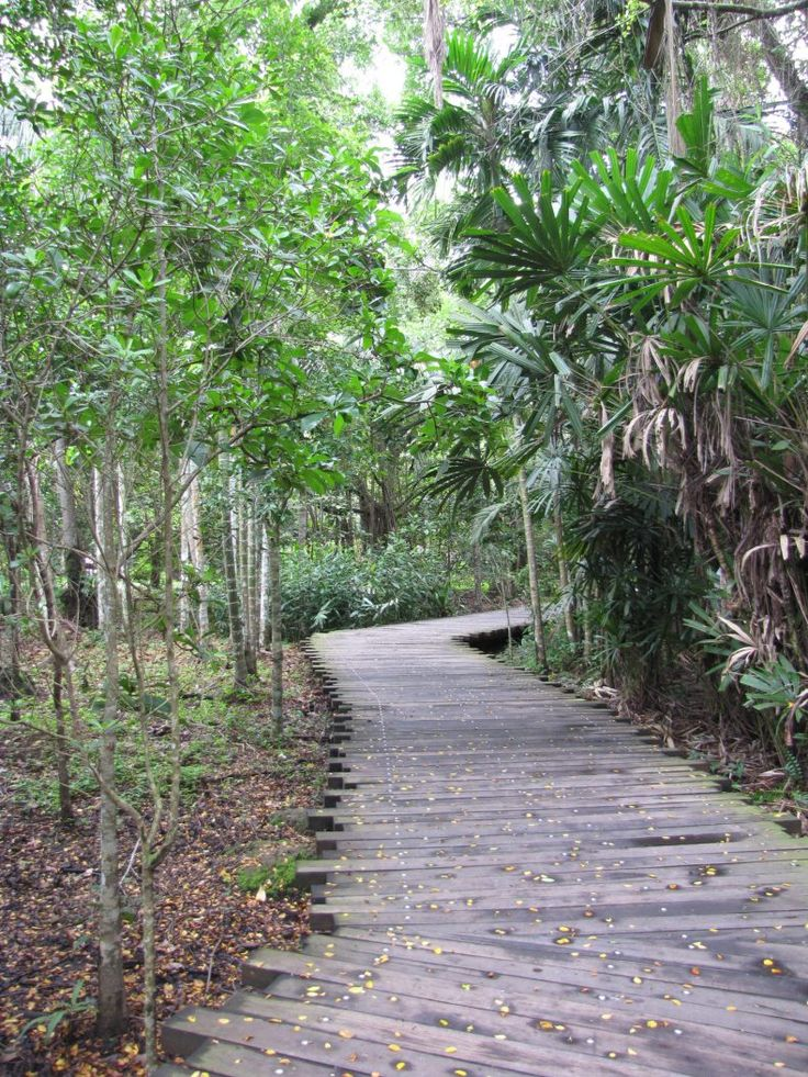 Pulau Ubin, Singapore, off the beaten path and perfect for get away from the hustle and bustle of the city. it is worth exploring.