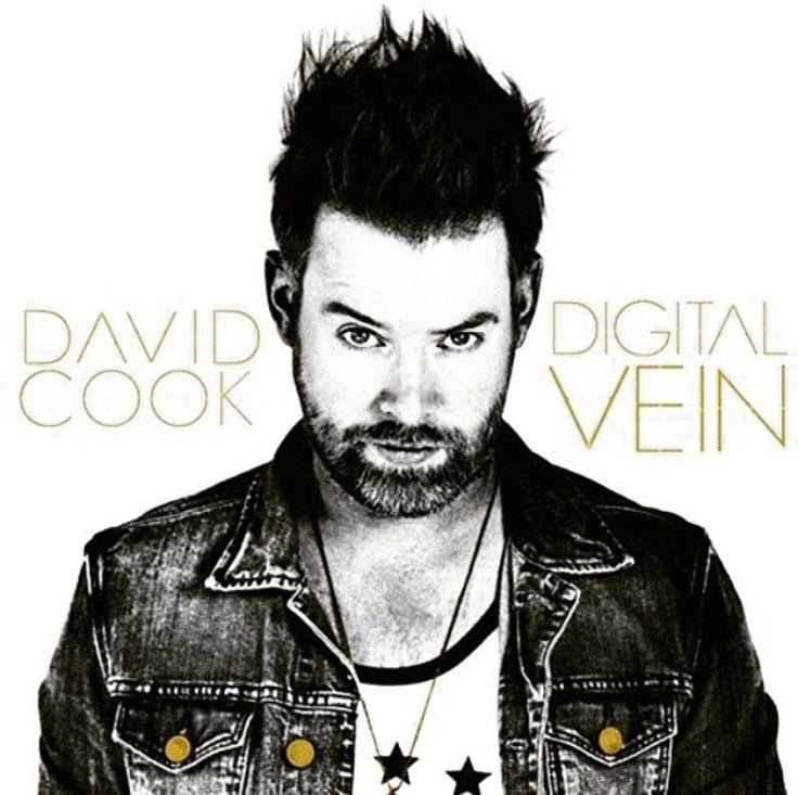 David Cook's album Digital Vein