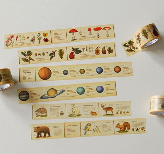 mt masking tape - plants, planets, animals