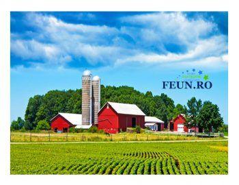 Agentia pentru Finantarea Investițiilor Rurale (AFIR) a publicat pe site-ul AFIR variantele consolidate ale Ghidului solicitantului pentru Submăsurile PNDR