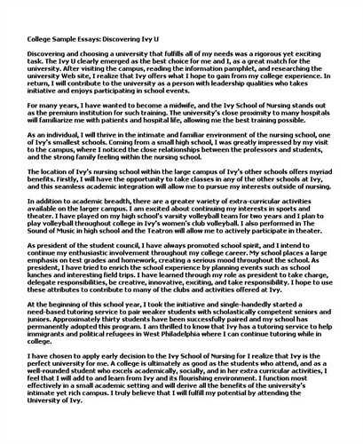 Best 25+ Good essay example ideas on Pinterest Essay writing - informative essay
