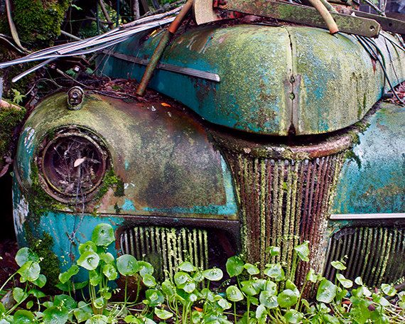 Old Vintage Car Turquoise Covered with Moss Rust <3 <3 <3