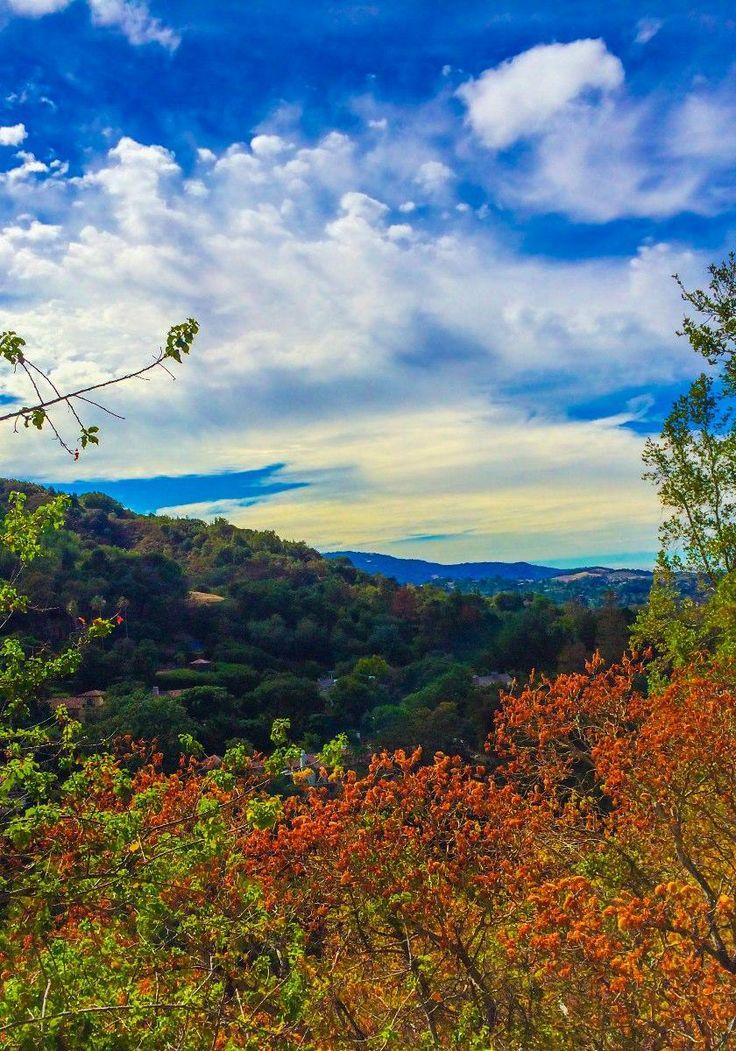 Views from Cañon Drive, Los Gatos, Ca