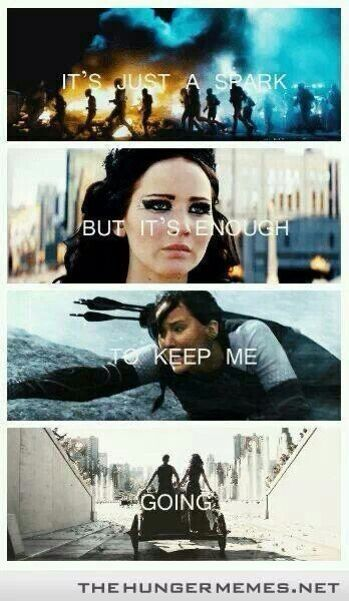 Hunger Games & Paramore lyrics?! My life is complete (Song: Last Hope)
