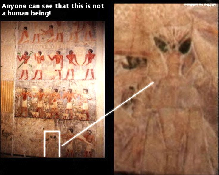 An alien in ancient Egypt, I hate it when people argue with me about my belief in this theory.