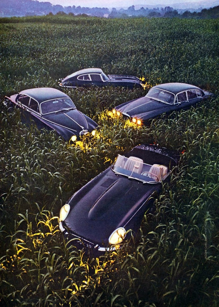 1968 Jaguar Advertisement