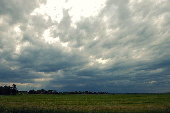 Bewolkte dag, Katwoude