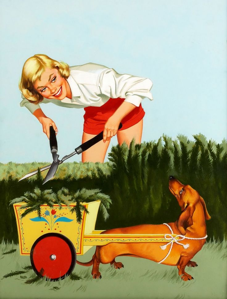 Farm Girl Pin-Up