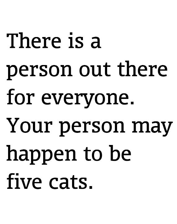 Yeah chances are I'll end up being the crazy cat lady. :(