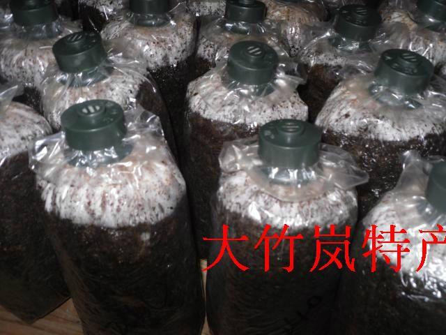 Полипропиленовые пластиковые пакеты 15×30×5С высокой температуры и давления кулака на задней крышке грибов вырабатывают новые штаммы продуктов сумки-Таобао