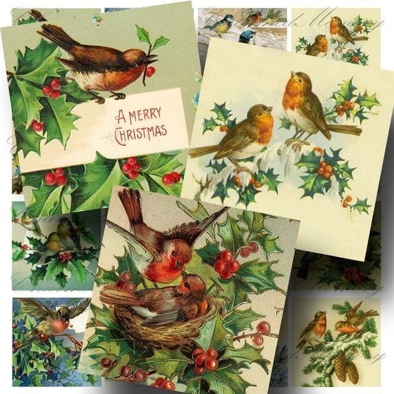 Vintage Christmas Birds 1 Digital Collage by CharmedMemoryCollage