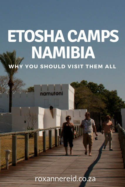 Camps of Etosha National Park, Namibia, and why they're all worth visiting #Africa #safari #travel