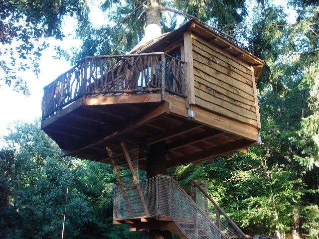 La chica de la casa de caramelo: Dormir en una casa en un árbol