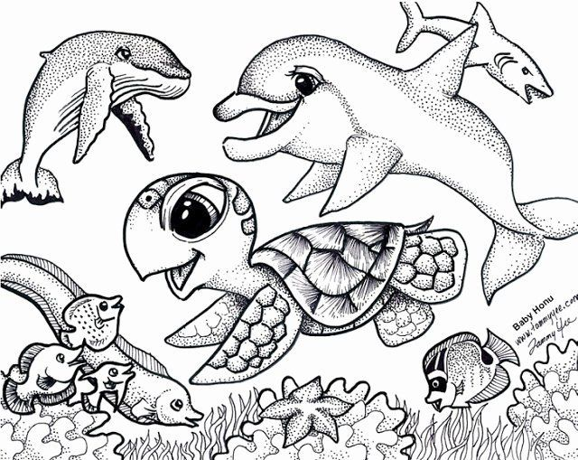 Coloring Pages Sea Animals In 2020 Turtle Coloring Pages