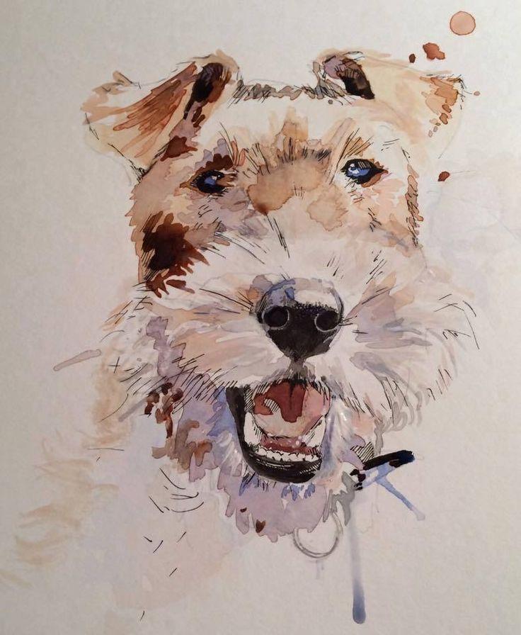 488 besten Fox terrier pelo de alambre Bilder auf Pinterest   Draht ...