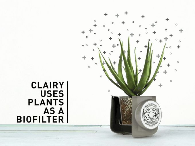Clairy combines the power of nature and technology with the beauty of design to eliminate indoor pollution and analyze it.