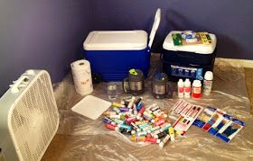 Evelyn James: Cooler Painting 101