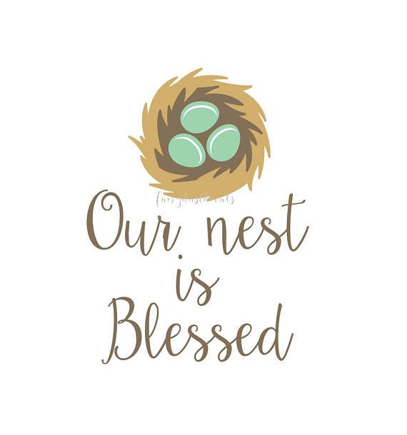 Wall Decal, our nest is blessed, nursery wall decals, bird nest decal, nest with eggs, blessed wall decal, vinyl letters, home wall decal