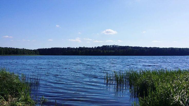 Cudo. #neirawypełzaznory #KaszubskaMarszruta #BoryTucholskie #jezioro #szczęście