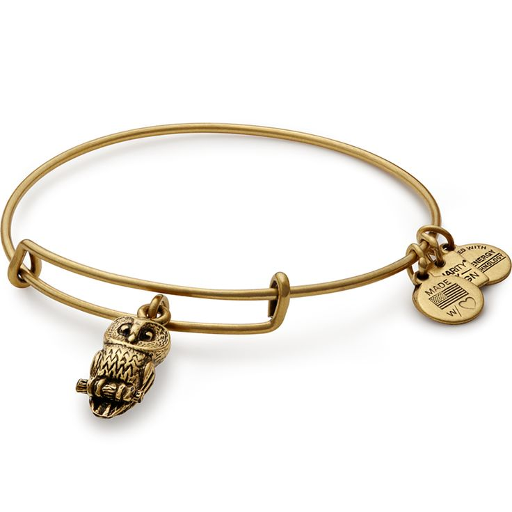 Ode To The Owl Charm Bangle | Roger Williams Park Zoo  Vision • Power • Intelligence  $28.00