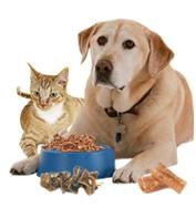 Pet Food Stamps | Pet Food Delivery what a great idea! Make a donation or apply for help!  Right now only cats & dogs, more animals later as more donors step up.