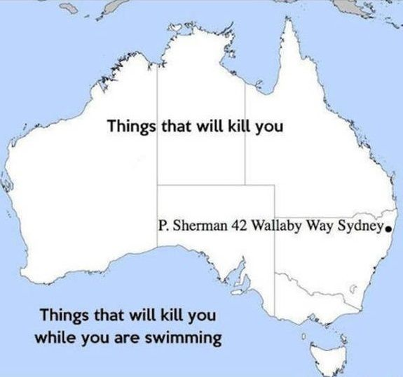 Map Of Australia Meme.Funny Map Of Australia Random Stuff Idk Anymore Funny Maps