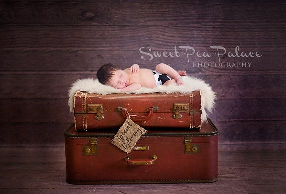 Newborn Baby Photography Prop Digital Backdrop for Photographers Vintage Suitcase Special Delivery on Etsy, $11.17 AUD