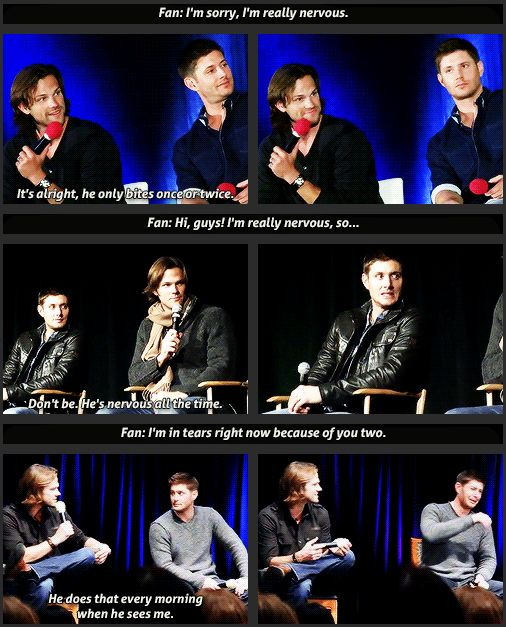 SPN fan: I'm very nervous ... awww Jared says something and Jensen just does it automatically <3 <3 love them || Jensen Ackles || Jared Padalecki #Supernatural Conventions #fan