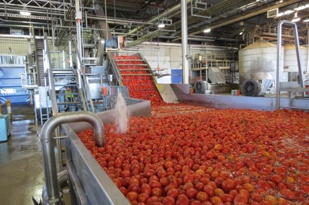 Ardmona cannery Shepparton Victoria