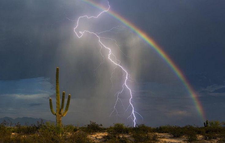 Fulmine e arcobaleno insieme, la foto della vita. «Questa sera, poco prima del tramonto, ho finalmente scattato la foto che stavo inseguendo da anni»: con questo commento Greg McCown, agente immobiliare appassionato di fotografia, ha postato sul suo profilo Twitter la foto di un fulmine che squarcia il cielo nello stesso punto in cui si trova un arcobaleno. La foto è stata scattata a Tucson, in Arizona.| Greg McCown / Saguaro Pictures