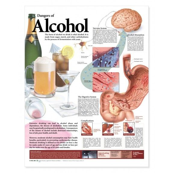 Dangers of Alcohol Chart / Poster - Laminated