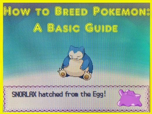 Are you trying #breed the most powerful #Pokemon team? Learn the basics of how to breed Pokemon, such as genders, #Egg Groups, breeding with Ditto and how to hatch an Egg. Start breeding your own Pokemon families today!