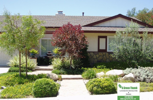 drought tolerant front landscape university city  san diego  california  agreenthumblandscape