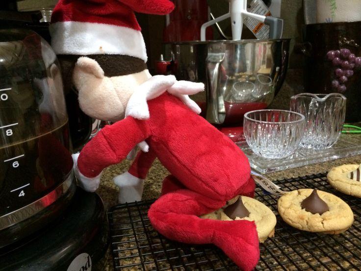 Elf Poop Cookies Elf On A Shelf Pinterest Cookies