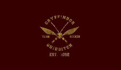 gryffindor quidditch seeker We sort too soon AU