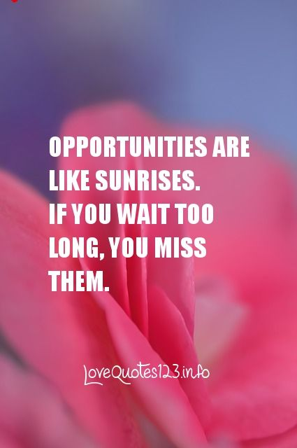 Opportunities Are Like Sunrises. If You Wait Too Long, You Miss Them.