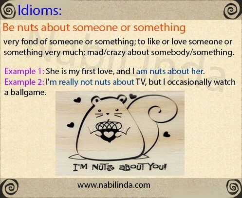 IDIOM: To BE NUTS ABOUT someone or something (Other ... Idioms And Meanings And Sentences