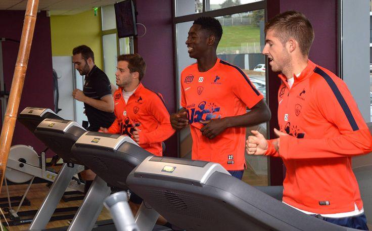 Le #sb29 et l'association Fée du Bonheur dans la salle de fitness Sybé Sport à #Brest http://www.sybe-sport.com/index.php/actualites-fitness/93-challenge-fitness-association-fee-du-bonheur