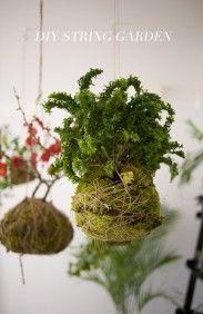 DIY String Garden    http://ruffledblog.com            (diy-paper): Gardens Ideas, Diy Gardens, Modern Gardens, Hanging Plants, Diy'S, String Hanging, Diy Projects, Hanging Gardens, Diy String Gardens