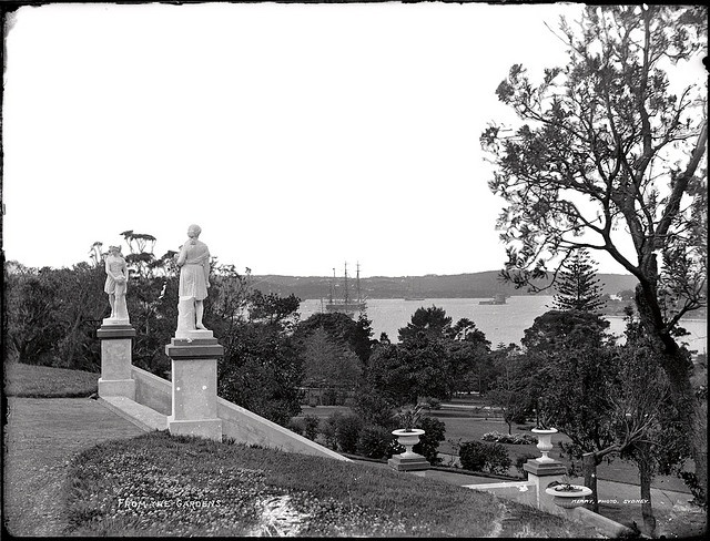 View to the harbour from Botanic Gardens, 1890's