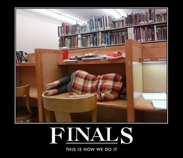 yup, sums it up.: Libraries, Colleges Life, Student Life, Lawschool, Finals Week, Funny, Finalsweek, Law Schools, True Stories