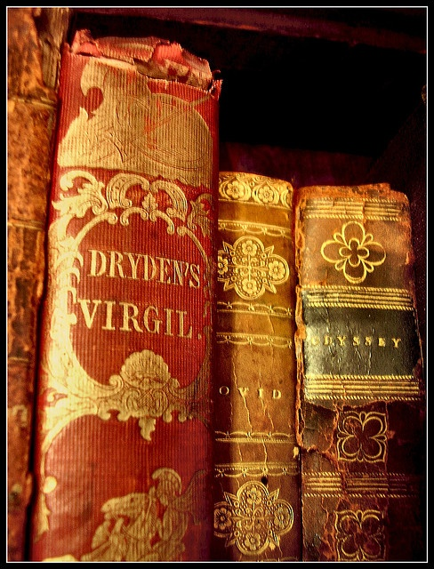 Virgil + Homer - leather bound books...these books would absolutely make me happy.  I have Kindle on my iPAD, but it will NEVER replace the pleasure of a book in my hands!