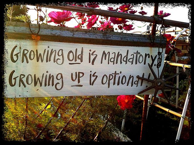 growing up staying young essay Before writing any essay, like growing up essay, you need to think over certain ideas and views that will help you express your own opinions and thoughts about the process of growing up even though your essay should consist of your own views, it must be done in a scientific style.