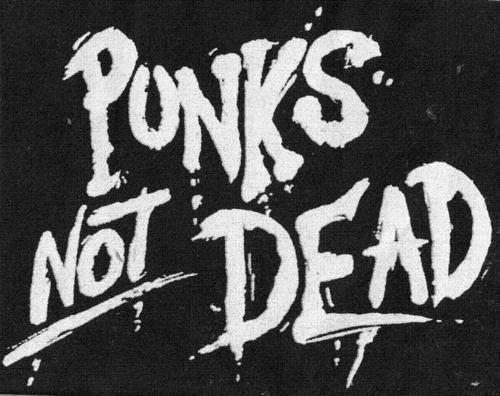 Punk-s-not-dead-punk-rock-14926257-500-396.jpg (500×396)