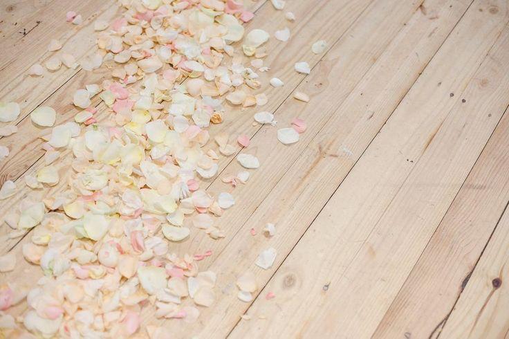 Rose petals on dancefloor