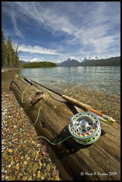 Definitely wish I could be fishing here right now.